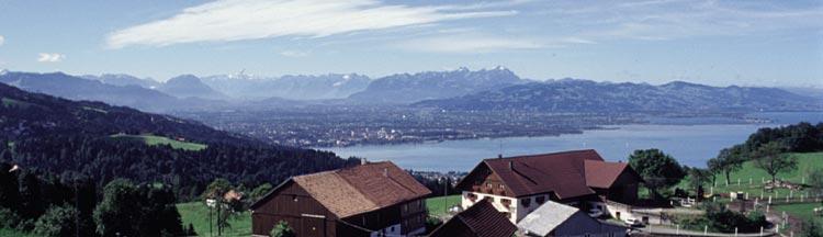 Bodensee Webcam Und Livecam Und Erste Unterwassercam Aus Dem Bodensee